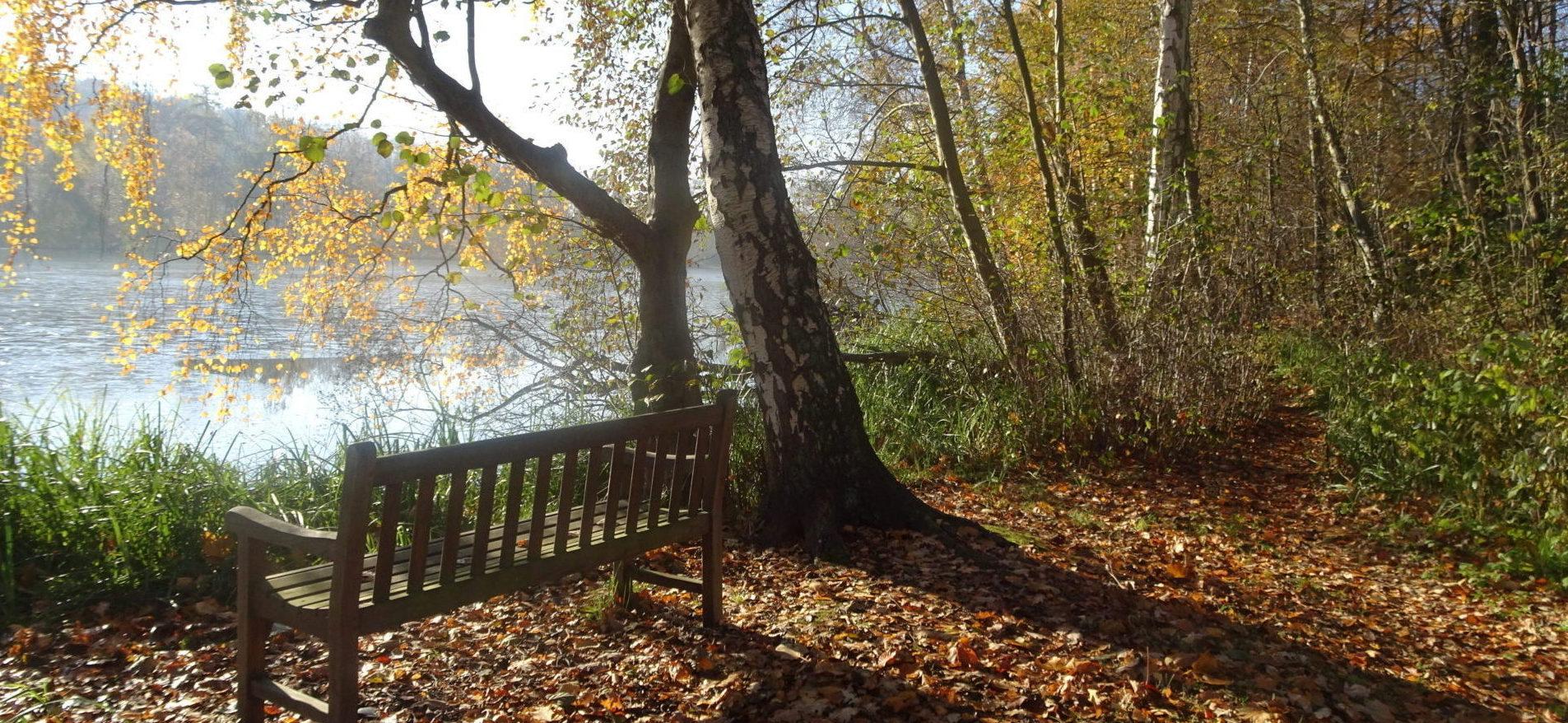 Sidde på en bænk i stilhed og se over en sø